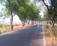Invest-on-Land-15Lakh-Bigha-At-Bagnan-Near-NH6