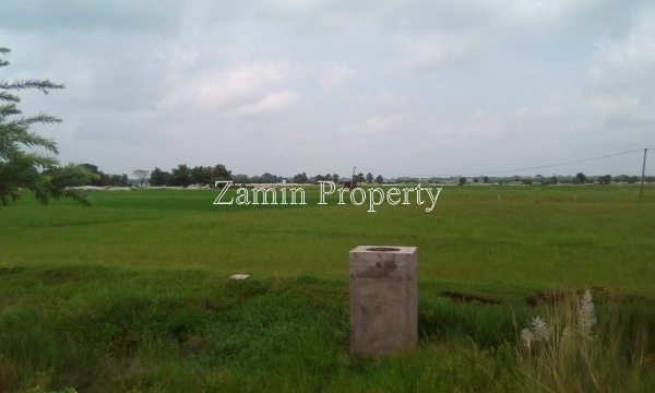 28 Kottahs Land For Resort At Tarapith
