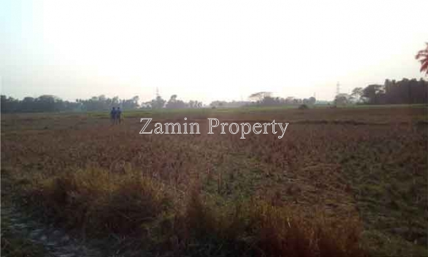 14Bigha Land At Panpur Amta road Near NH6 Uluberia Howrah